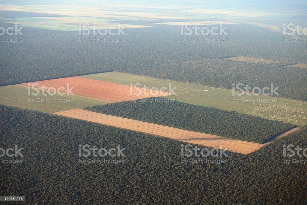 Amazon desmatamento do ar - foto de acervo