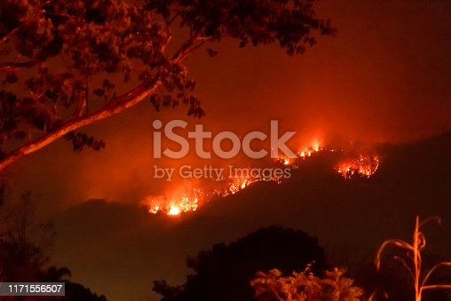 istock Amazon forest fire disater problem.Fire burns trees in the mountain at night. 1171556507