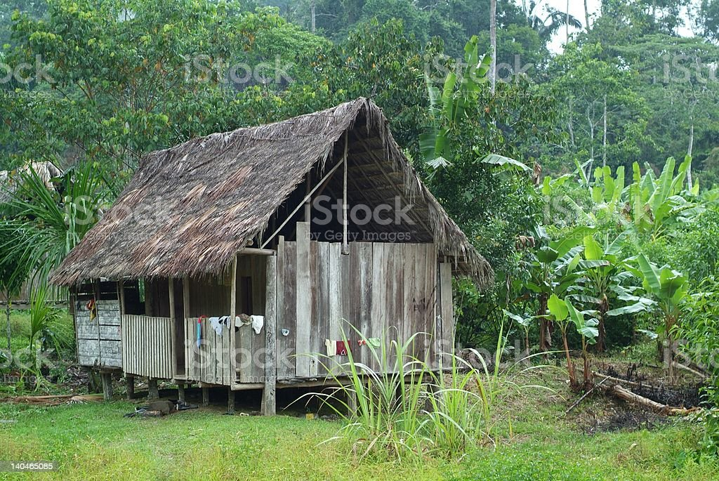 Amazon Hut royalty-free stock photo