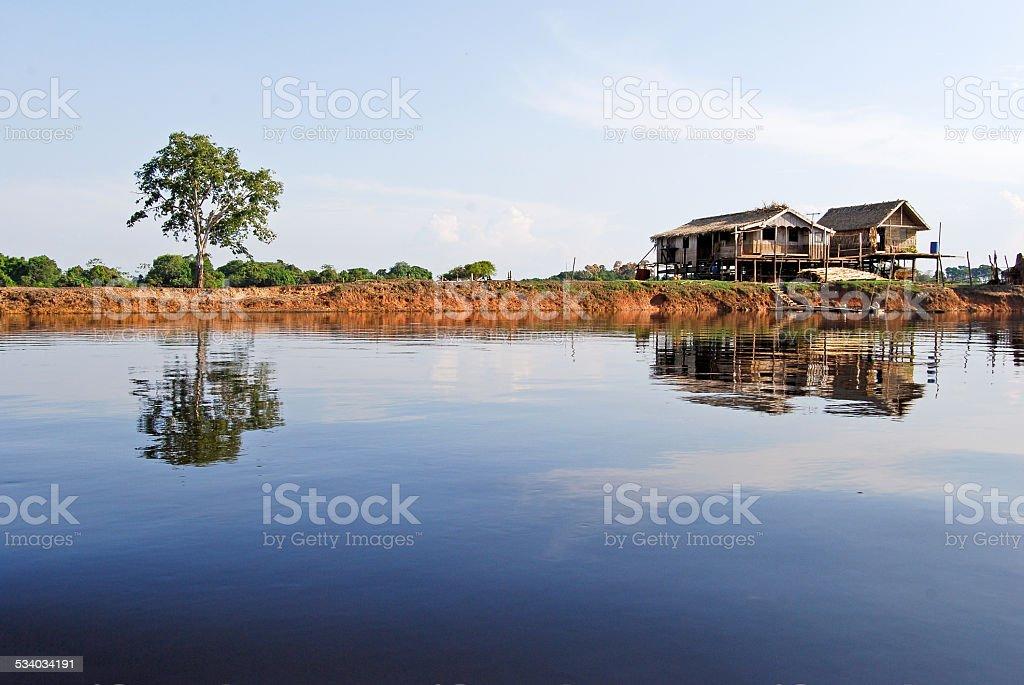 Amazonas Regenwald:  Am Amazonas in Manaus, Brasilien – Foto