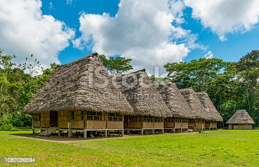 Traditional housing in large wooden huts with palm leaf roof in the Amazon Rainforest, Ecuador.