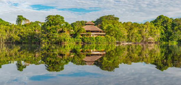 Amazon Rainforest Lodge Reflection Traditional architecture of an Amazon rainforest lodge in panoramic composition, Yasuni national park, Ecuador. The tributaries of the Amazon river comprise the countries of Suriname, Guyana, French Guyana, Venezuela, Colombia, Ecuador, Peru, Bolivia and Brazil. amazon river stock pictures, royalty-free photos & images