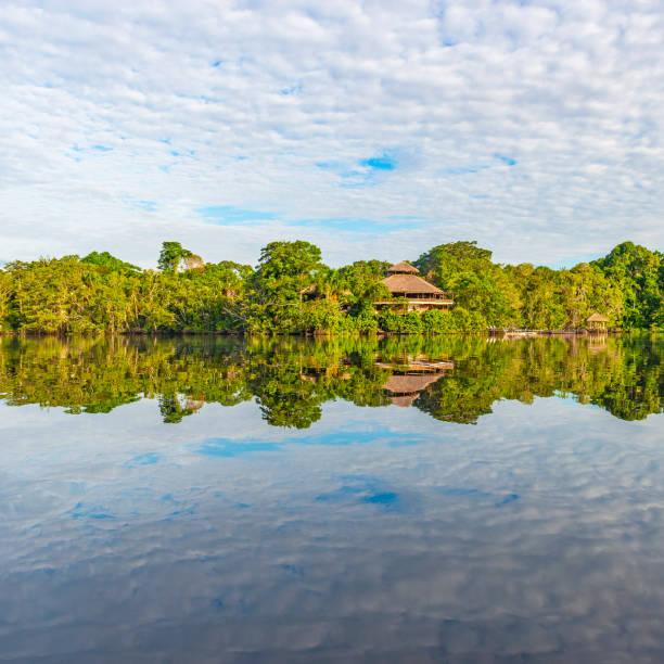 Amazon Rainforest Lodge, Yasuni National Park, Ecuador stock photo