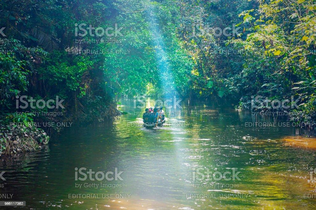 Amazon Rainforest remo canoa no Equador. - foto de acervo