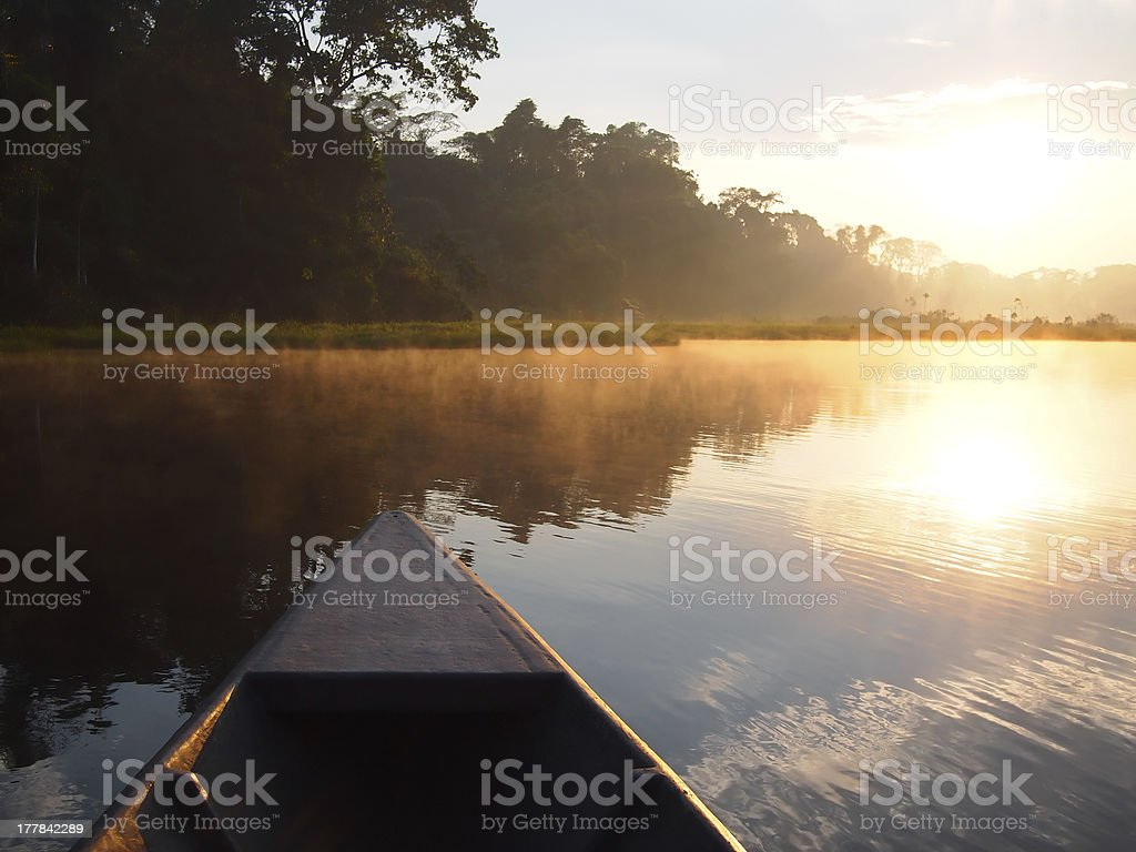 Amazon rainforest sunrise by boat stock photo