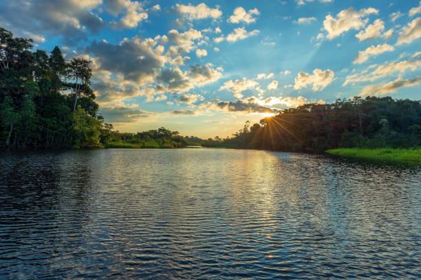 Amazon Rainforest Sunset stock photo
