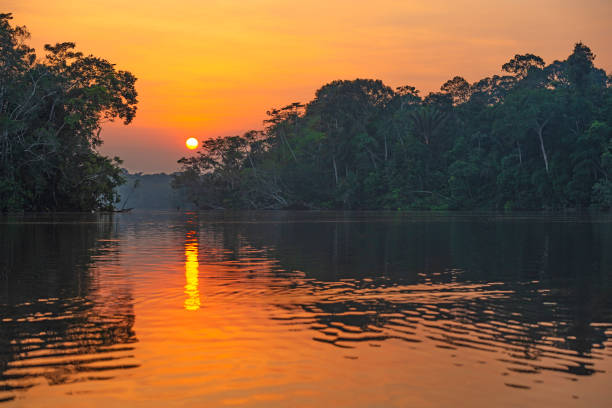 Amazon Rainforest Sunset Reflection Reflection of a sunset by a lagoon inside the Amazon Rainforest Basin, Yasuni national park. The Amazon river basin comprises the countries of Brazil, Bolivia, Colombia, Ecuador, Guyana, Suriname, Peru and Venezuela. amazon river stock pictures, royalty-free photos & images