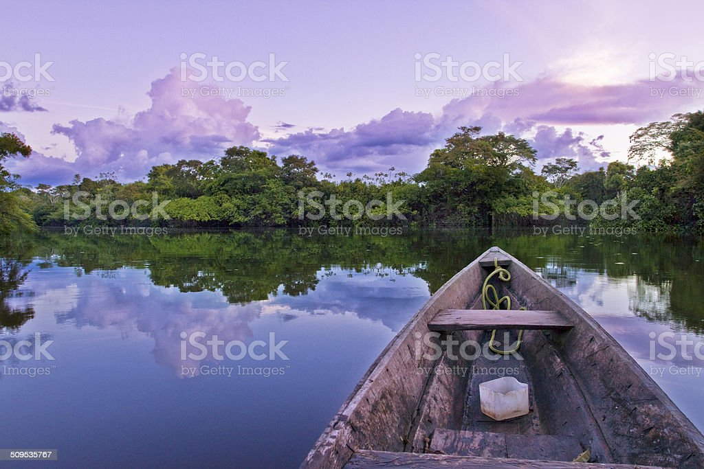 Amazon river blissful evening stock photo