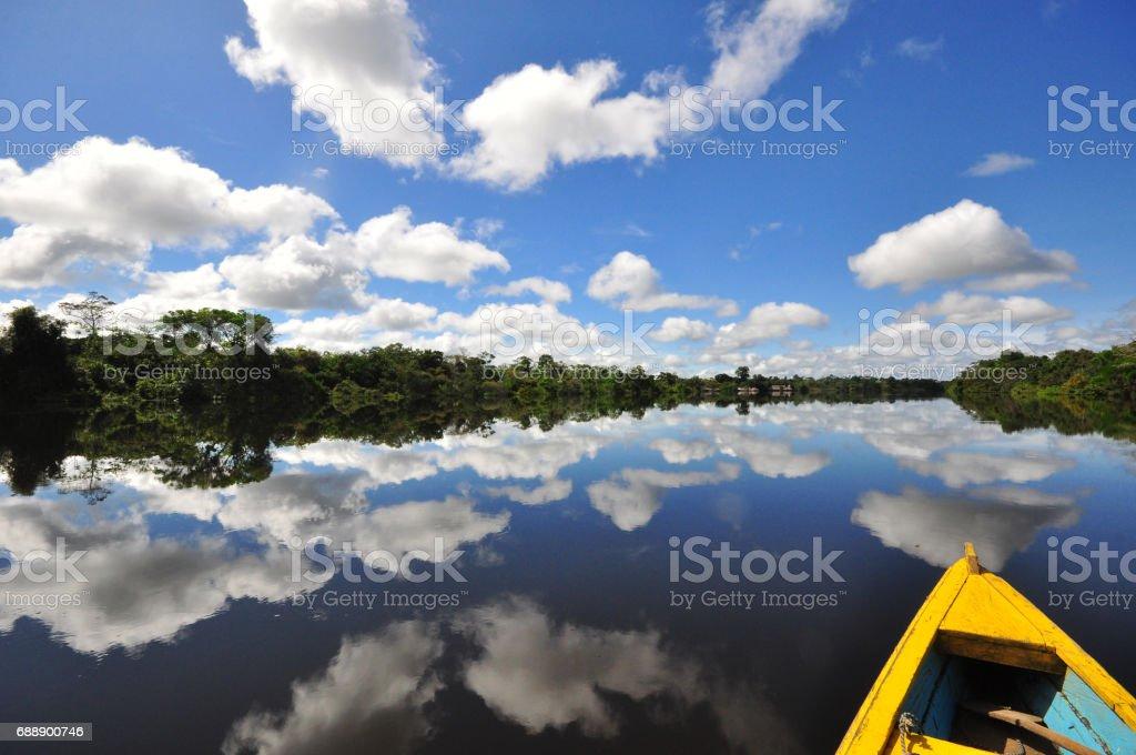 Amazon River, Colombia. stock photo