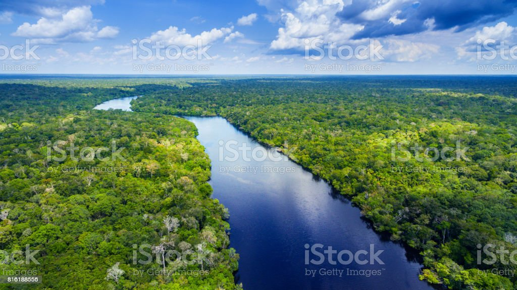 Amazon river in Brazil stock photo