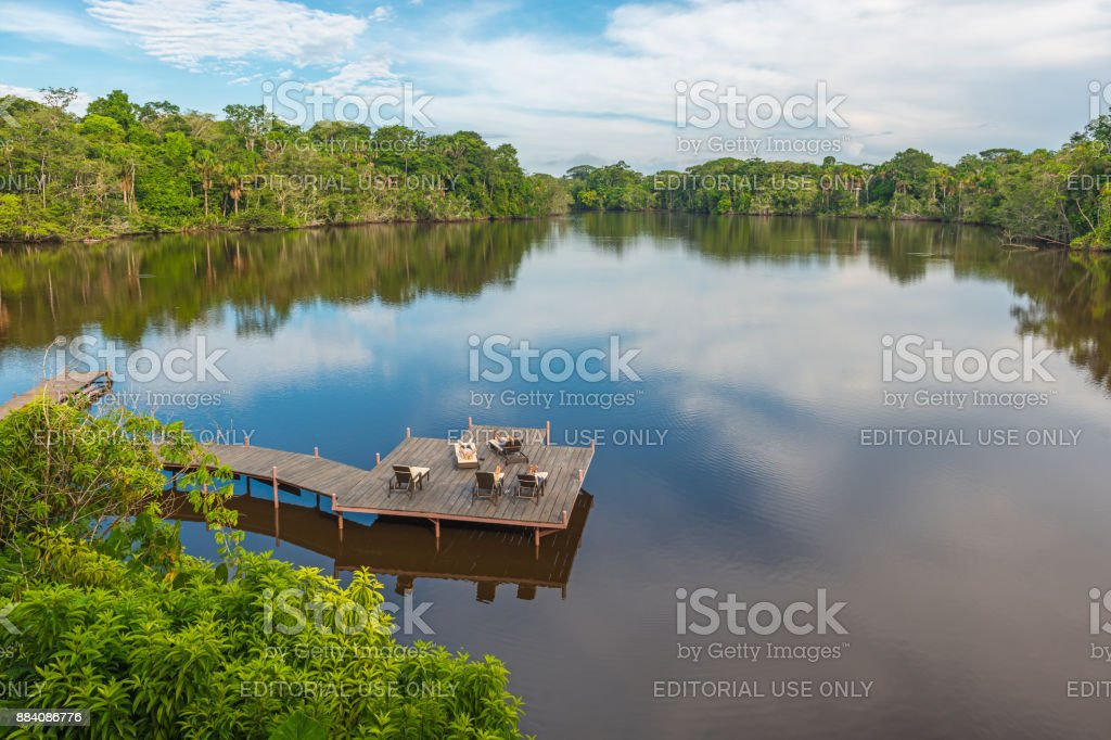 Amazon River Sunbathing stock photo