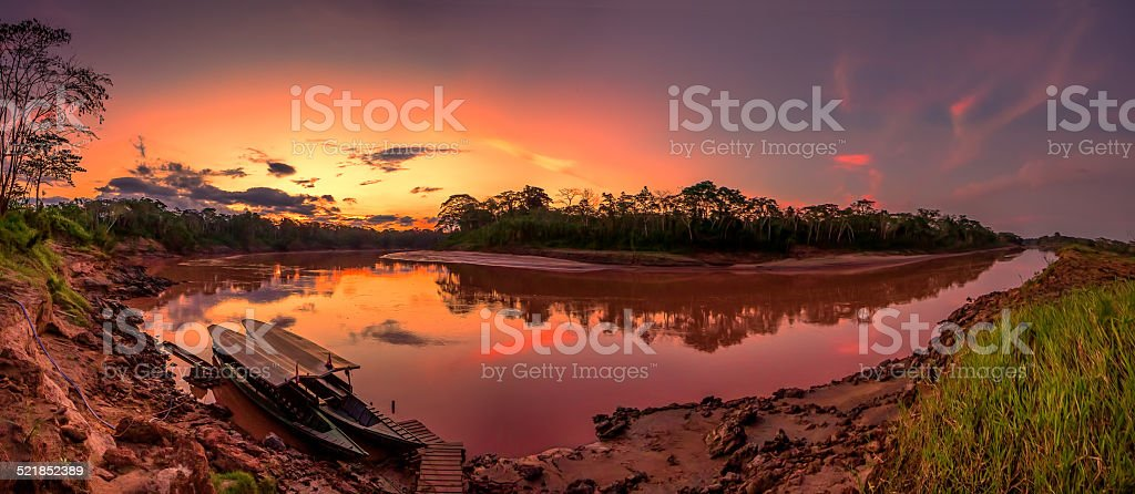 Amazon scenic panorama stock photo