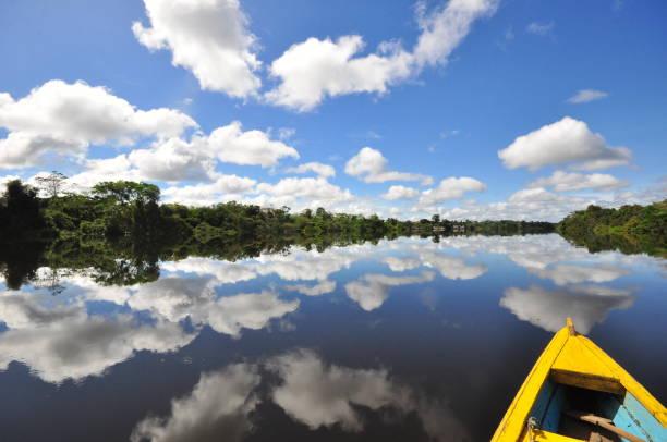 Amazonas River Amazonas Rio rio negro brazil stock pictures, royalty-free photos & images