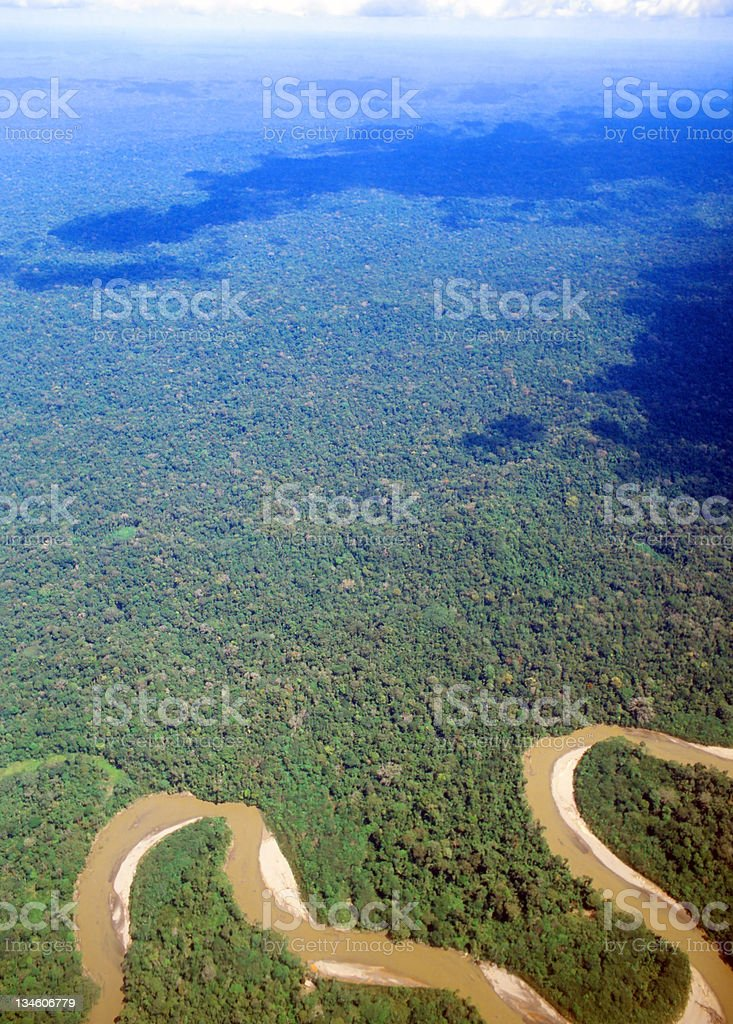Amazonian rainforest from the air stock photo