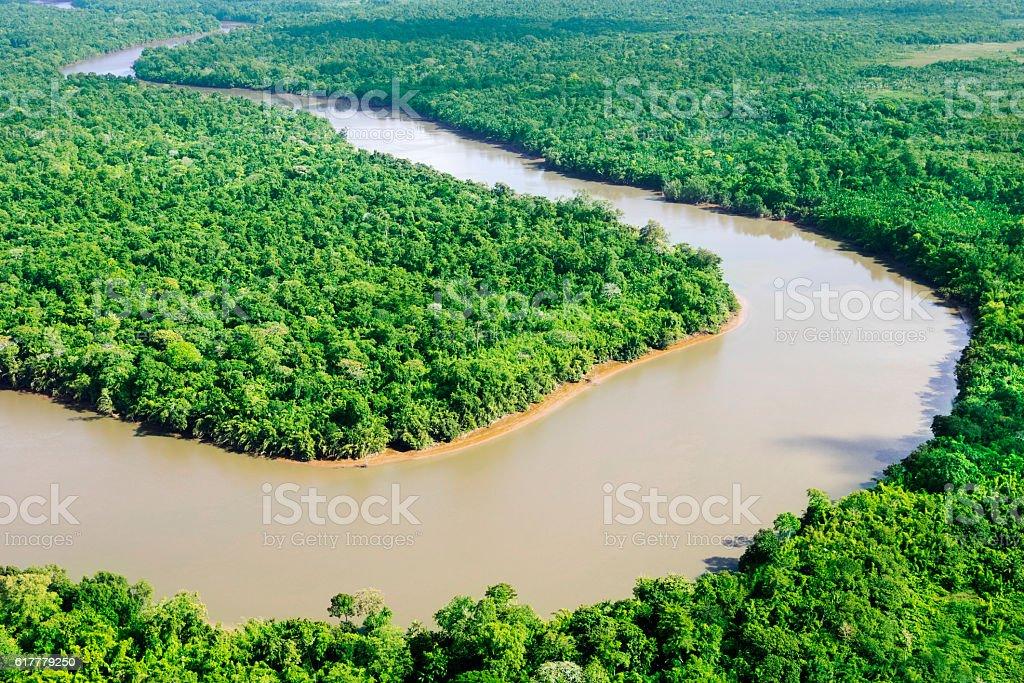 Amazonian scene stock photo