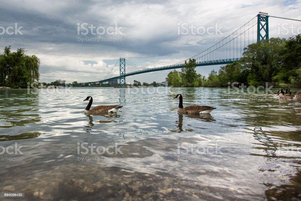 Ambassador Bridge - Windsor-Detroit stock photo