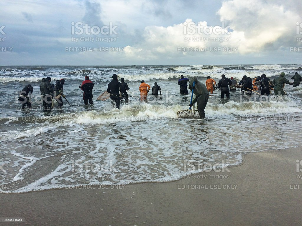 Amber catchers auf der Ostsee – Foto