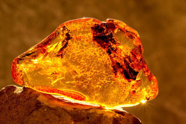 Amber in sun with inclusions stock photo