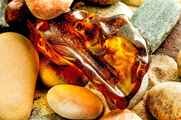Amber on a beach of the Baltic Sea – Foto