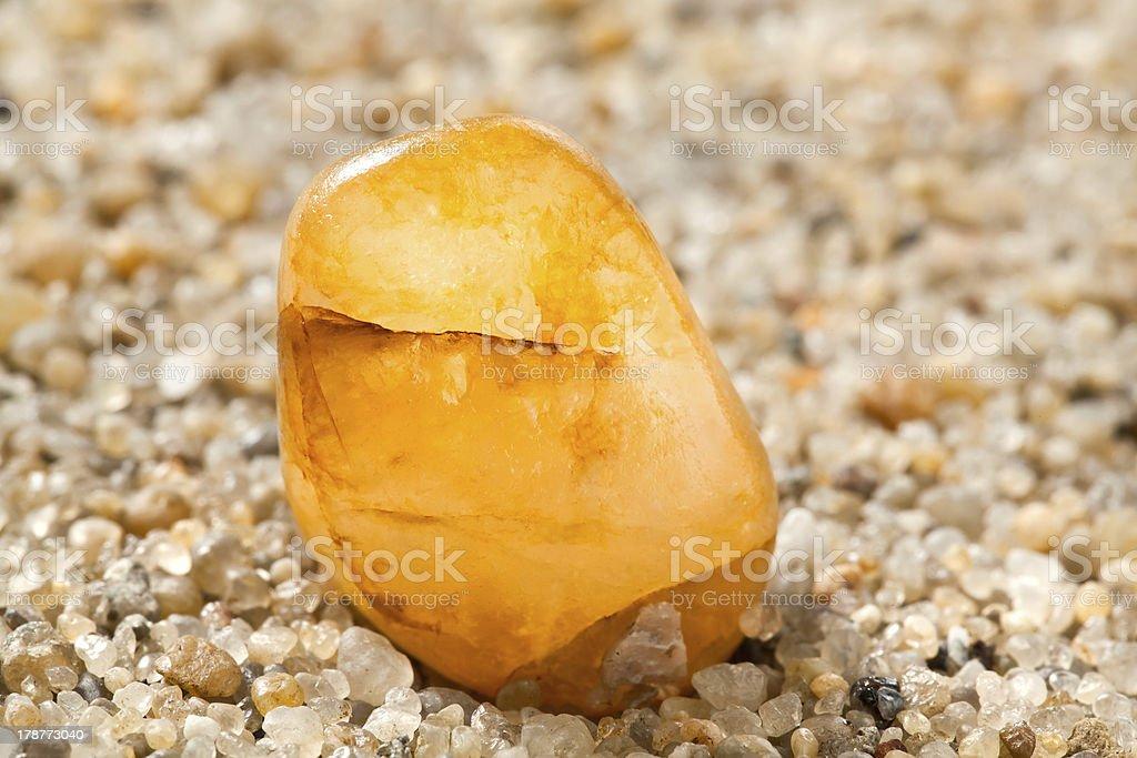 Amber auf sand – Foto