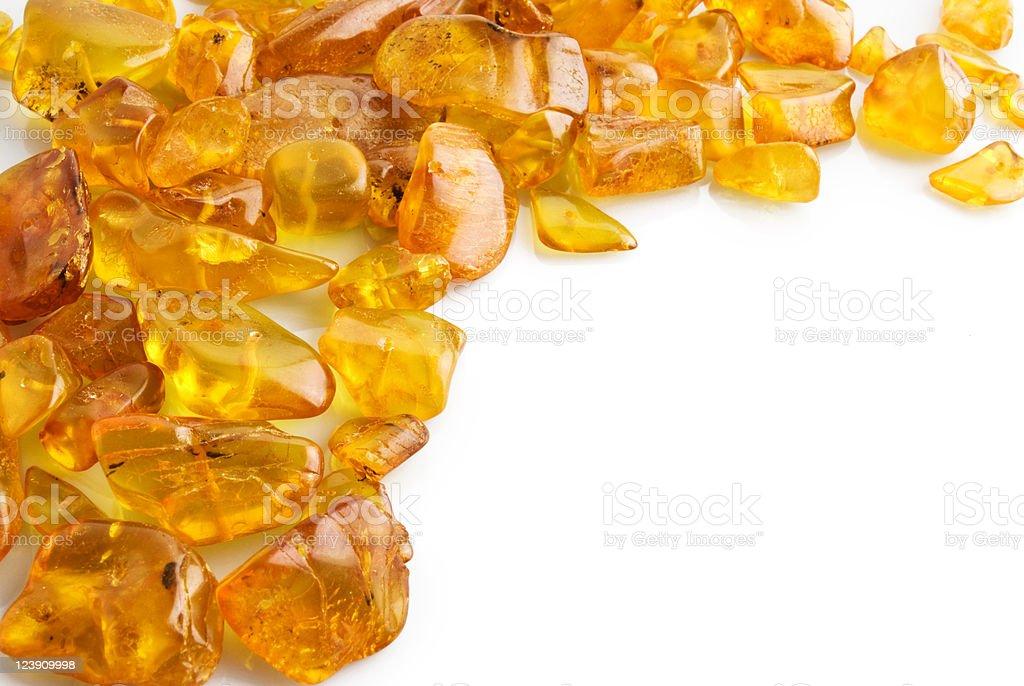 Amber on white stock photo