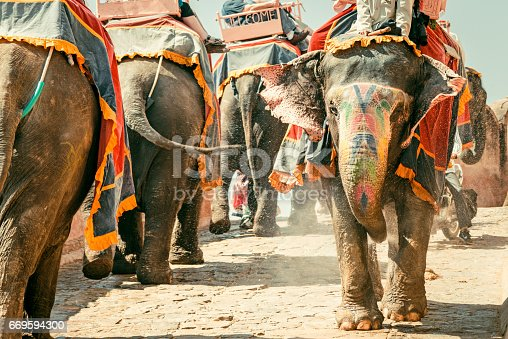 Colorful Indian Elephant Convoy walking down the small street from famous Amber Palace in Jaipur, Rajasthan, India. Edited vintage colors.