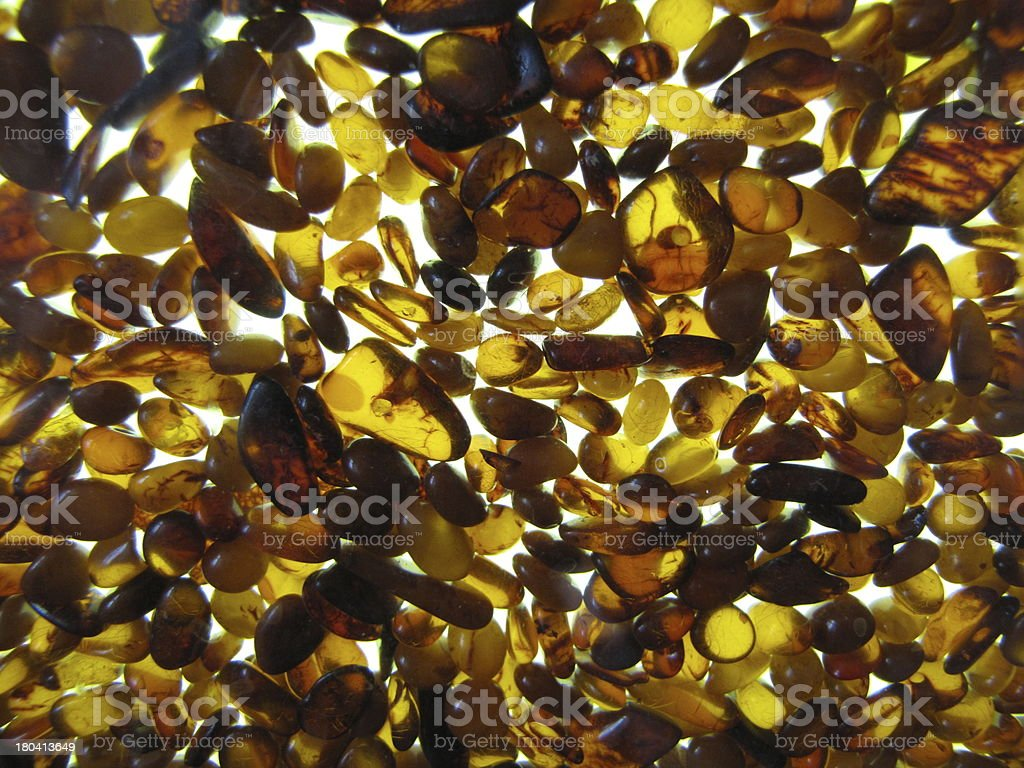 Amber royalty-free stock photo