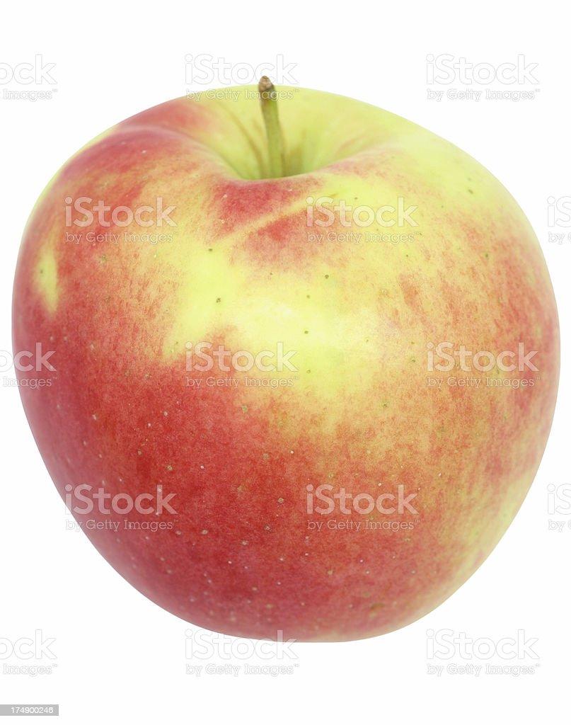 ambrozja jabłko – zdjęcie