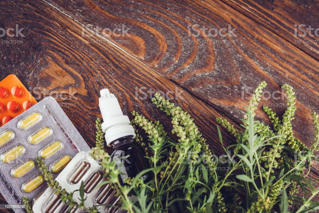 Ambrosia artemisiifolia allergy. Pills and nasal spray to cure...