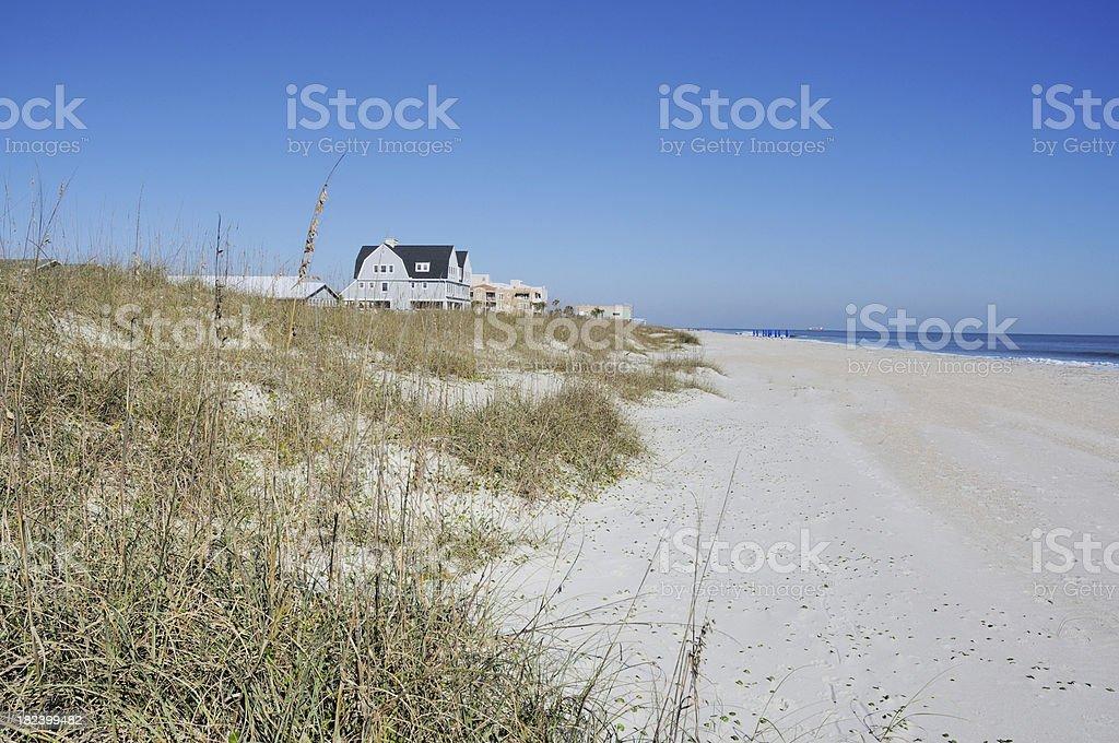 Wyspa Amelia Floryda Beach House Wiersz Wzdłuż Brzegu Oceanu