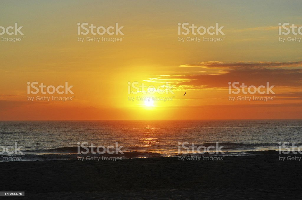 Amelia Island Florida Beach Sunrise royalty-free stock photo