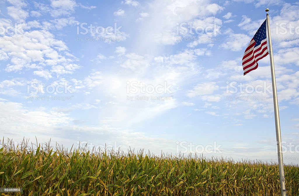 American Agriculture stock photo