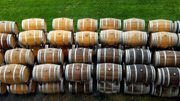 American and French Oak Wine Barrels Lined Up at a Vineyard stock photo