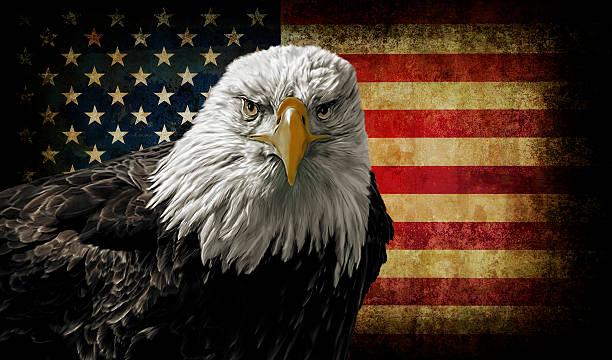 American Bald Eagle on Grunge Flag stock photo