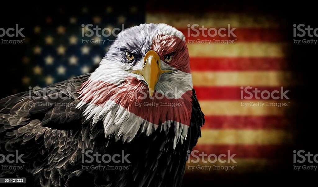 American Bald Eagle on Grunge Flag stock photo