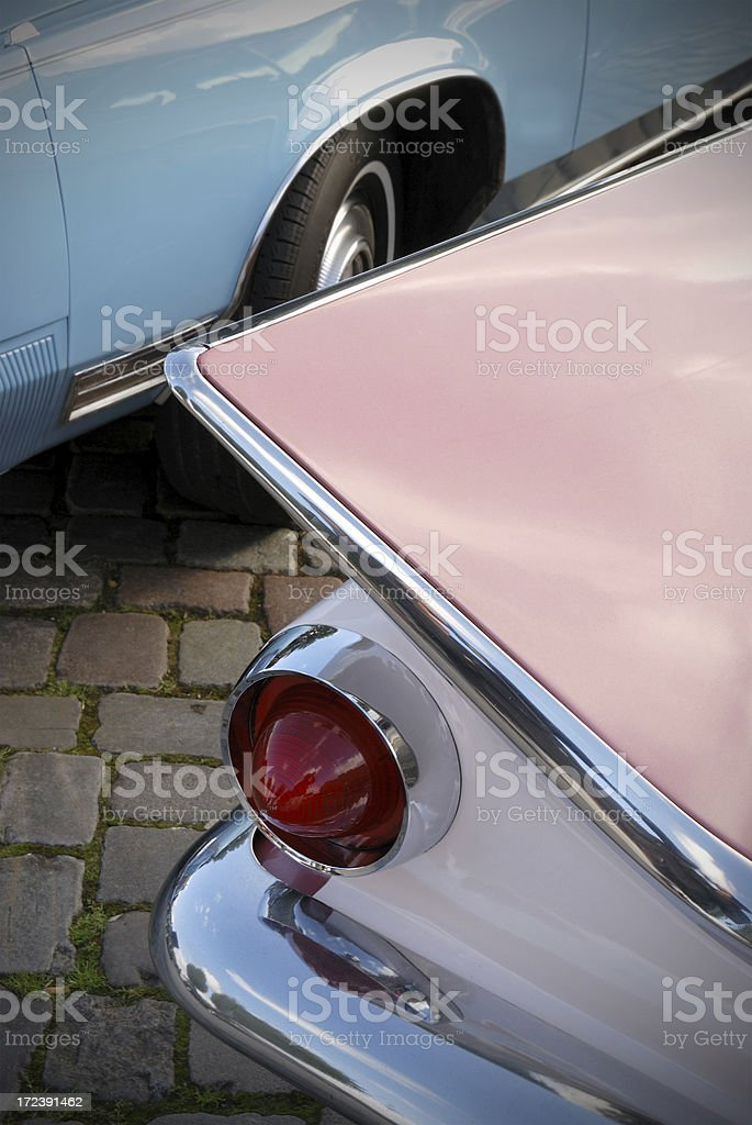 american beauties royalty-free stock photo