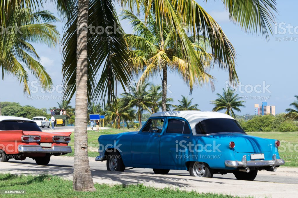 American blue red white classic cars parked under palms in Varadero...
