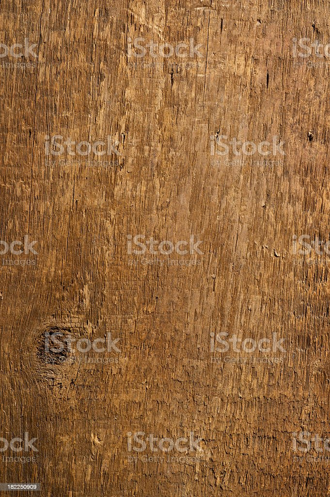 American Chestnut Wood stock photo