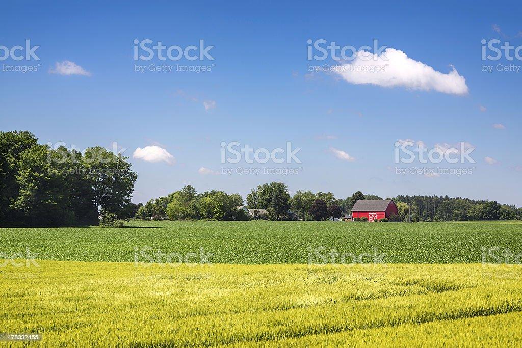 American country farm stock photo