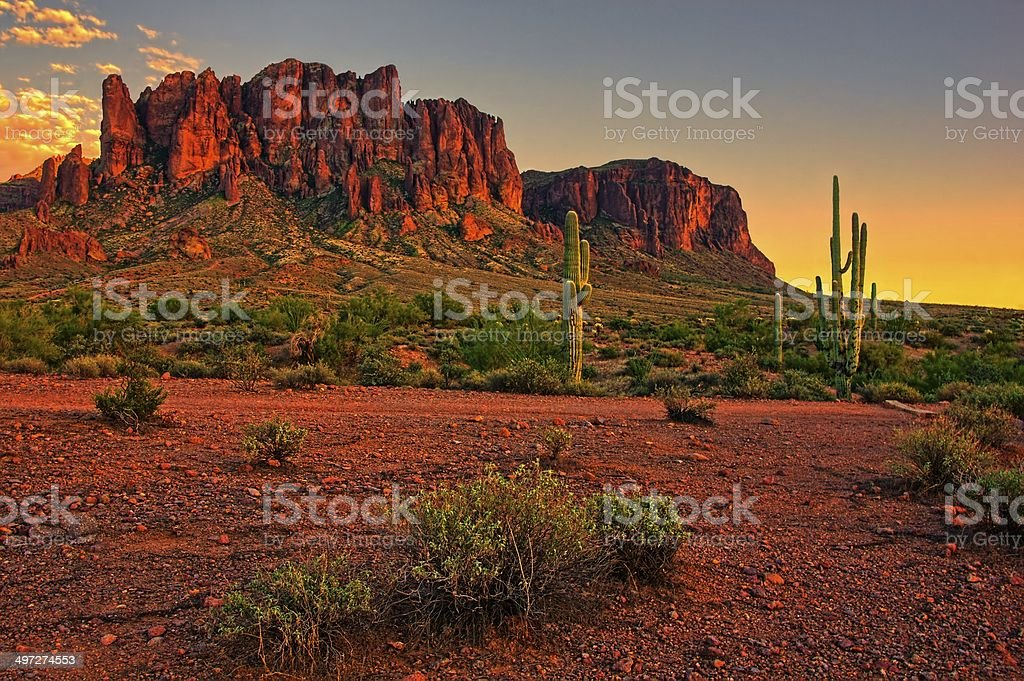 American desert sunset with cacti and mountain stock photo