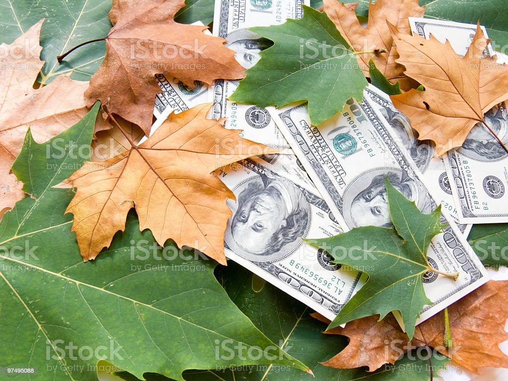 American dollars and Autumn leaves in a pile royalty-free stock photo