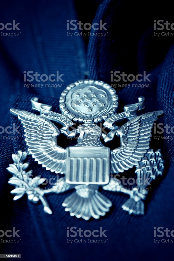 American Eagle royalty-free stock photo
