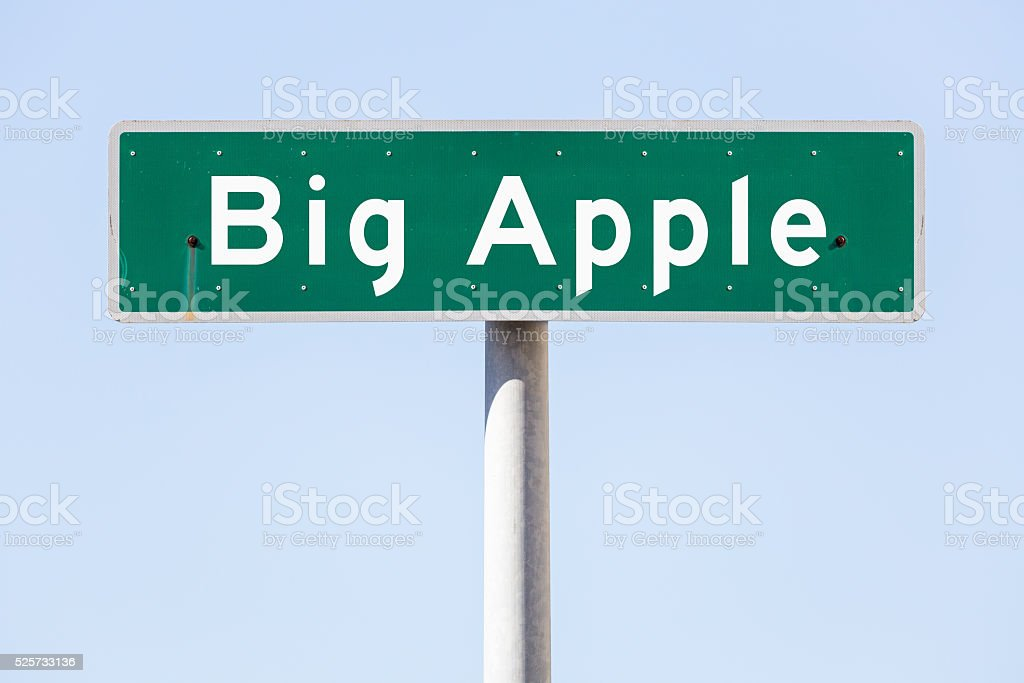 American empty street name sign stock photo