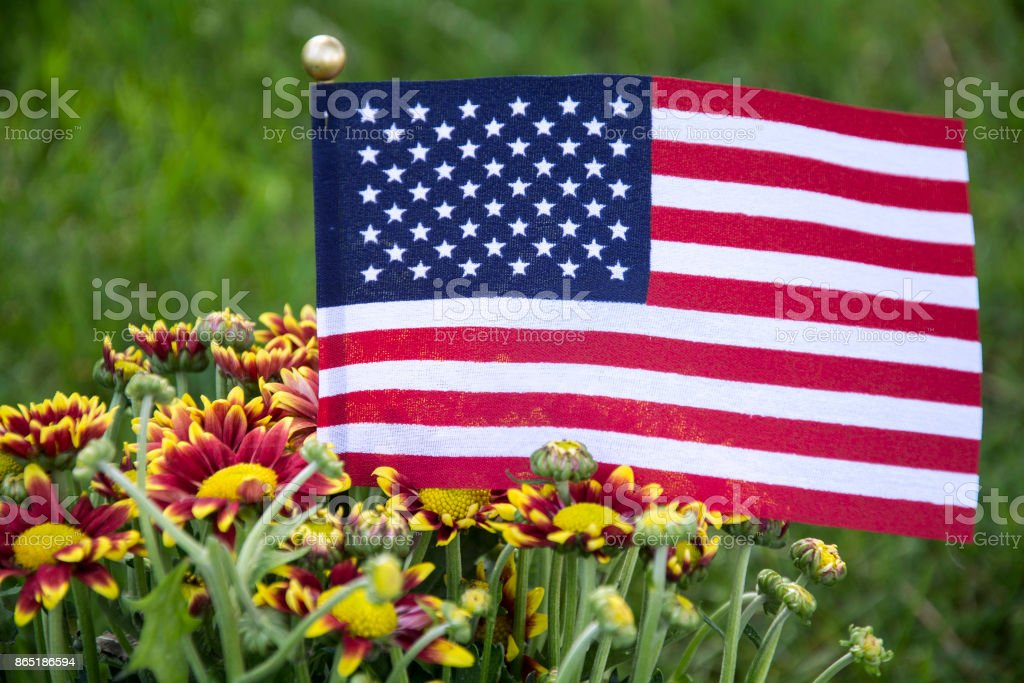 american flag and flowers for memorial day stock photo