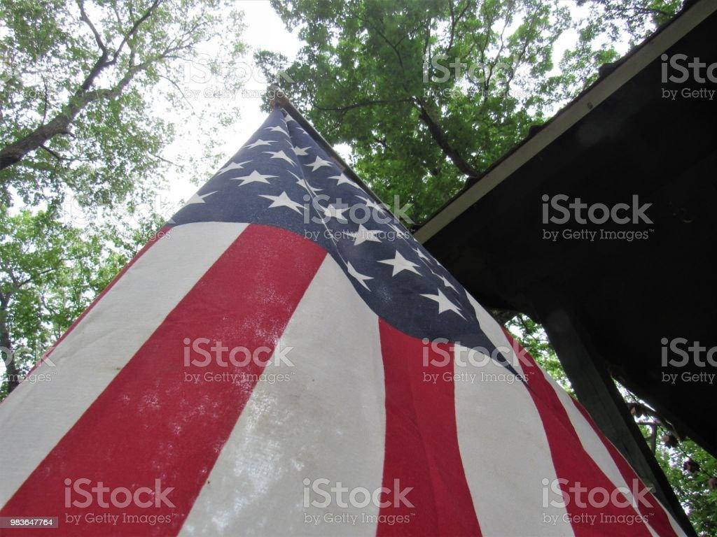 Copas das árvores e da bandeira americana - foto de acervo