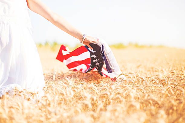 American flag and wheat stock photo