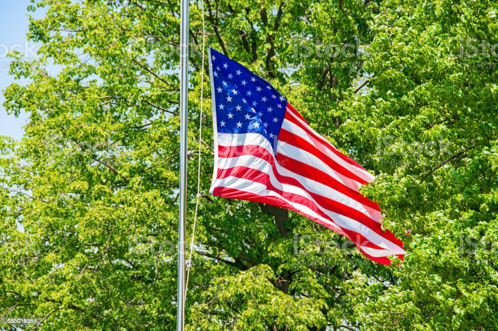 American flag at half-mast in trees stock photo