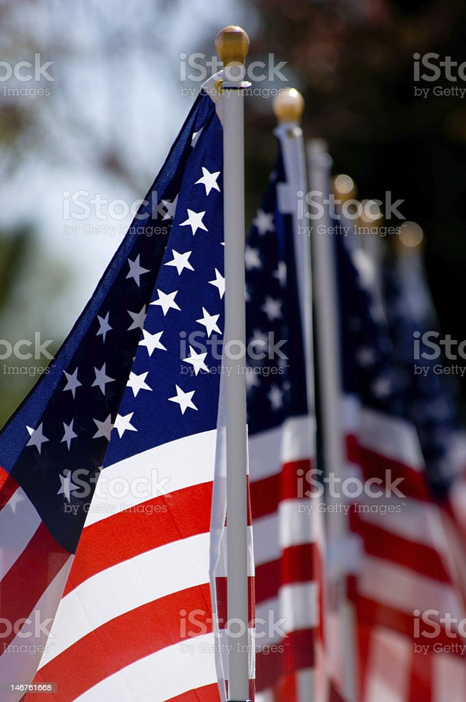 American Flag Display for Holiday royalty-free stock photo