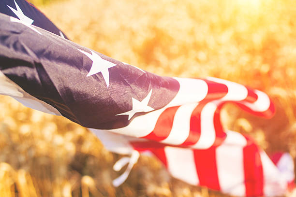 American flag flies proudly in the wheat stock photo