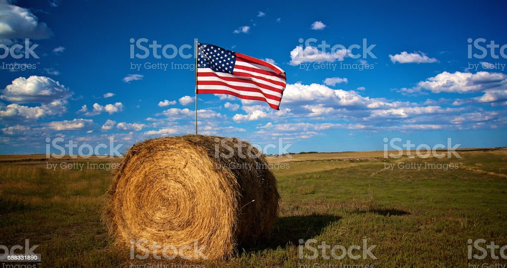 American flag in bale of hay in farm field stock photo